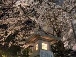 【3月のスタッフ&サロンスケジュール&炭酸泉ソーダスパの特典】